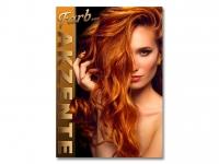 Plakat FRISEUR FARB AKZENTE Werbung - verschiedene Din-Formate wählbar!